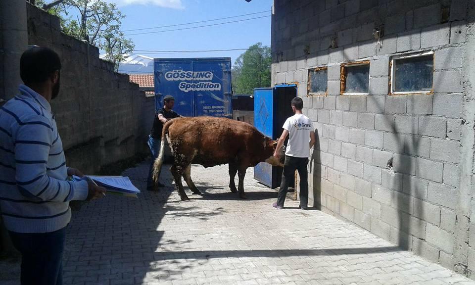 Pranverë e begatshme për fermerët e Komunës së Dragashit!